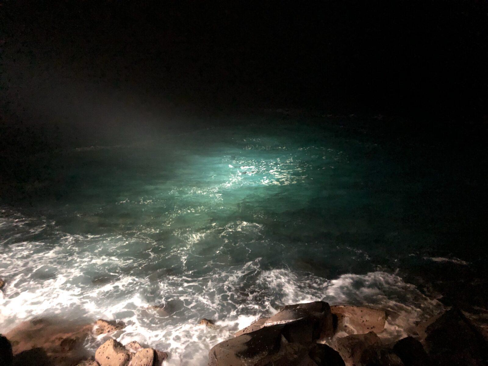 Manta Rays on the Bay Beobachtungsplattform