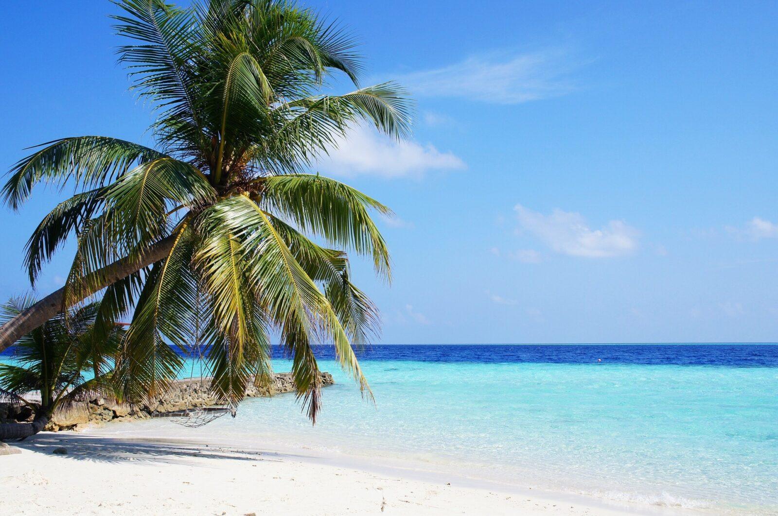 In der Business Class auf die Malediven für 1.739 Euro