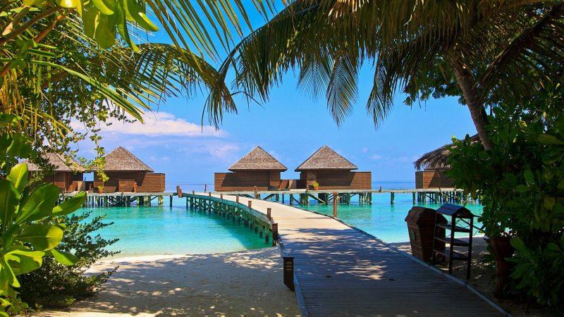 In der Business Class auf die Malediven für 1.212 Euro