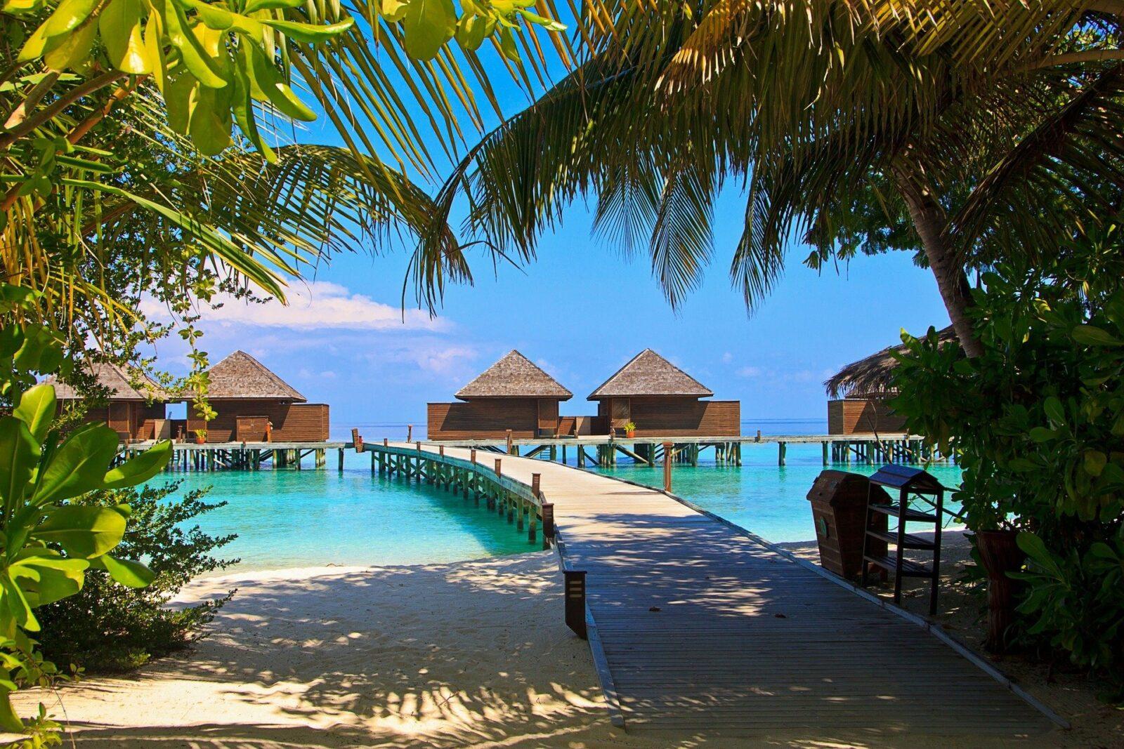 Auf die Malediven in der Qatar Business Class für 1.585 Euro